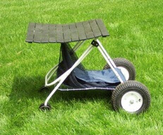 Zoom Buggy on grass with table top